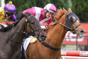 Cox Plate Exemption for 2021 Feehan Stakes Winner Superstorm