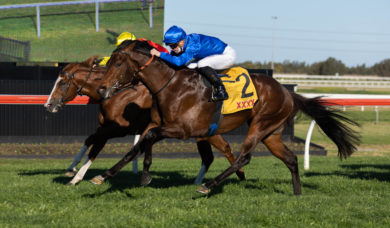 2021 Golden Rose Stakes Field & Odds: Anamoe Favourite