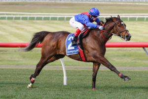 Zaaki Scratched From Ladbrokes Cox Plate 2021; Mackinnon Stakes New Target