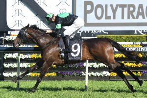 Sesar To Carbine Club Stakes After Roman Consul Stakes Win