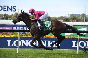 Angel Of Truth To Australian Derby After Tulloch Stakes Win