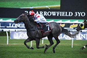 2020 Glasshouse Handicap Results: Krone Wins for Gollan