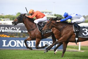 2020 George Ryder Stakes Results: Dreamforce Triumphs Over the Shark for First Group 1 Win