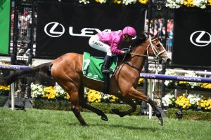 Sapphire Stakes Results 2020: Sure Knee Continues Waller Wins
