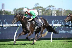 Mo'unga Takes on Kiwi Star in Randwick Guineas 2021 Field