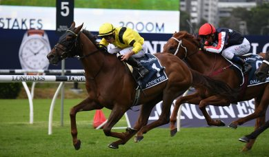2021 Queen Elizabeth Stakes Winner: Addeybb Goes Back to Back, Verry Elleegant Runs Second