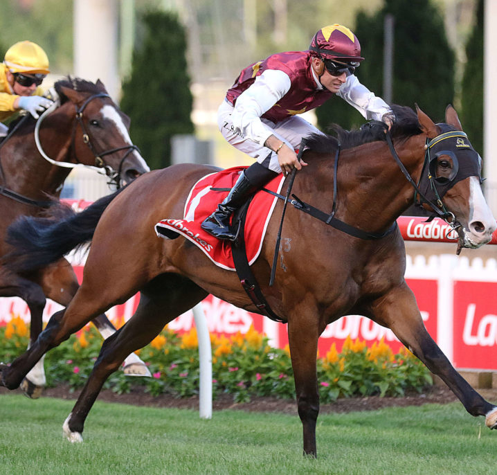 Group 2 Australia Stakes Winner: Streets Of Avalon To Defend Futurity Stakes Title