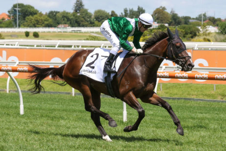Blue Diamond Favourite Enthaar Dominates 2021 Chairman's Stakes Results