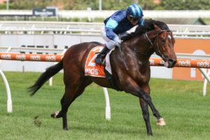 Portland Sky Horse Form (Photo: Ultimate Racing Photos) | Races.com.au
