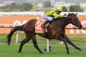 General Beau Horse Form (Photo: Ultimate Racing Photos) | Races.com.au