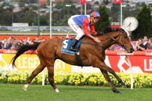 Double You Tee Horse Form (Photo: Ultimate Racing Photos) | Races.com.au
