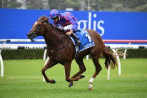 Profiteer Horse Form (Photo: Steve Hart) | Races.com.au