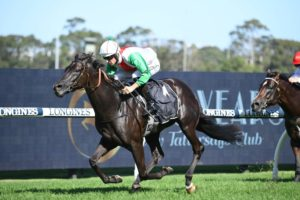 Aegon Horse Form (Photo: Steve Hart) | Races.com.au
