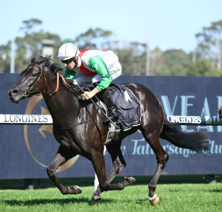 Aegon Dominates 2021 Randwick Guineas Field & Odds