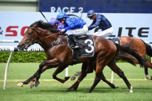 Anamoe Horse Form (Photo: Steve Hart) | Races.com.au