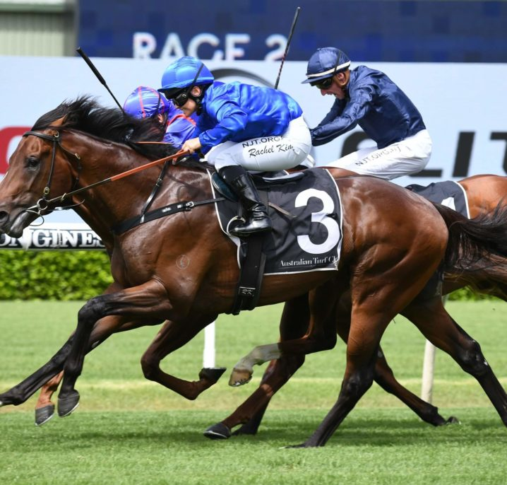 2021 Golden Slipper Odds Firm on Todman Winner Anamoe