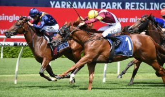 2021 Reisling Stakes Results: Glistening Golden Slipper Hope