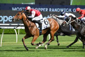 Lion's Roar Horse Form (Photo: Steve Hart)   Races.com.au