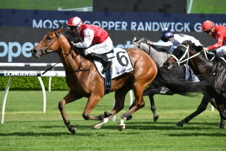 Randwick Guineas 2021 Winner Lion's Roar onto Rosehill