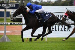 Arcaded (Photo: Steve Hart) | Races.com.au