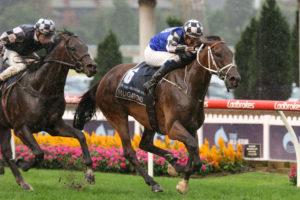 Mugatoo Horse Form (Photo: Ultimate Racing Photos) | Races.com.au