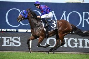 Krone (Photo: Steve Hart) | Races.com.au