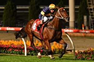 Masked Crusader Horse Form (Photo: Ultimate Racing Photos) | Races.com.au