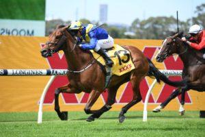 Favorite Moon Horse Form (Photo: Steve Hart) | Races.com.au