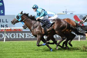 Mo'unga (Photo: Steve Hart) | Races.com.au
