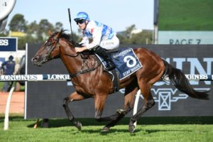 Stay Inside (Photo: Steve Hart) | Races.com.au
