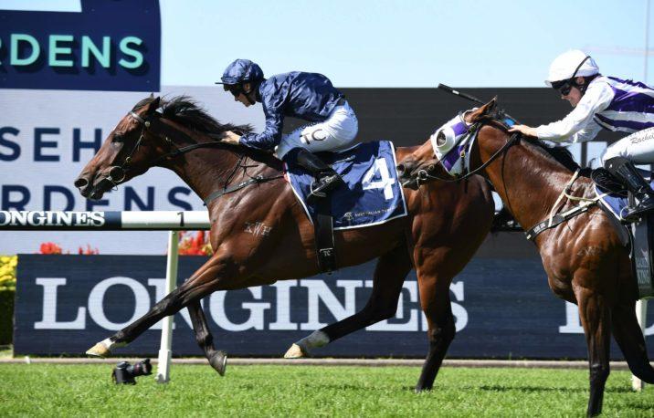 Australian Derby Odds Firm on 2021 Tulloch Stakes Winner Yaletown