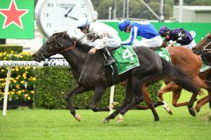 Jamaea Horse Form (Photo: Steve Hart) | Races.com.au