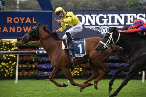 Addeybb Horse Form (Photo: Steve Hart) | Races.com.au