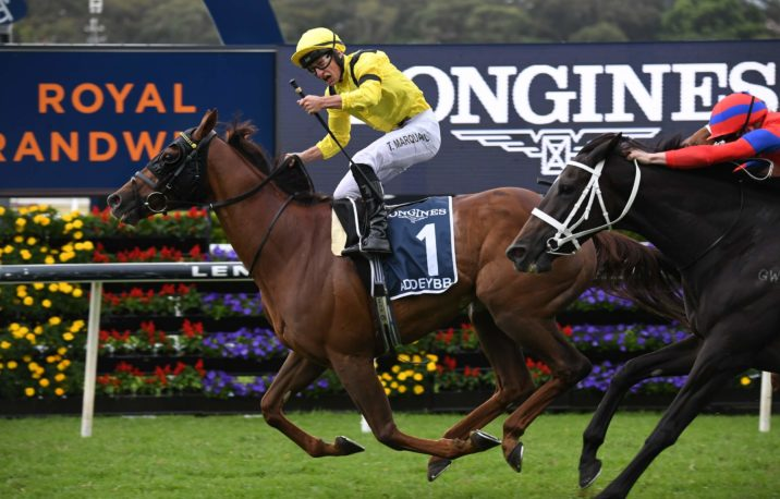 Queen Elizabeth Stakes 2021 Results: Addeybb Fights Off Verry Elleegant in Another Thriller