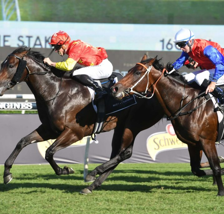 2021 Cox Plate Tips: Exotic Betting Selections