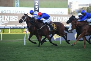 All Aged Stakes 2021 Winner: Kolding Beats Savatiano in a Photo