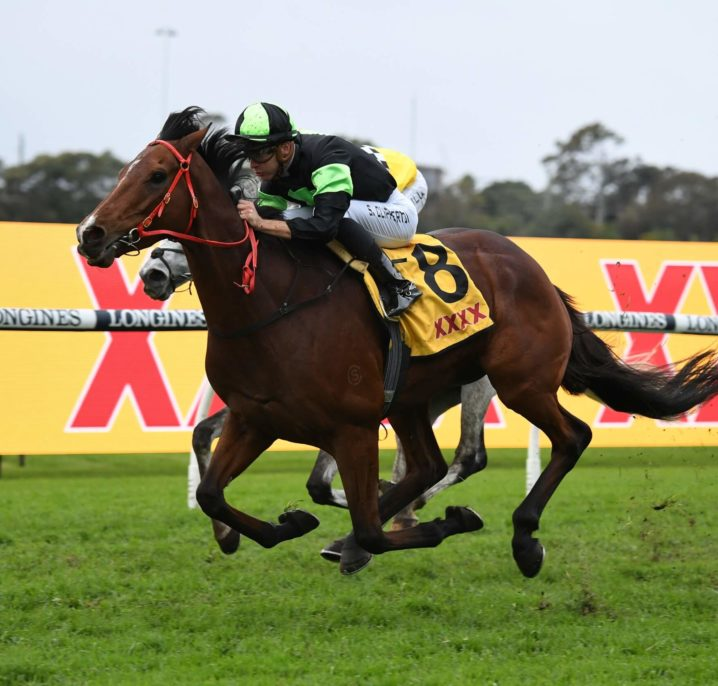 Stockman Odds-On In Updated 2021 Caloundra Cup Field & Betting
