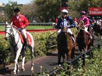Australian Horse Racing Carnivals