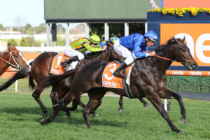Ingratiating Horse Form (Photo: Ultimate Racing Photos) | Races.com.au