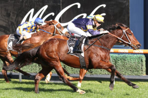 Masked Crusader (Photo: Ultimate Racing Photos) | Races.com.au