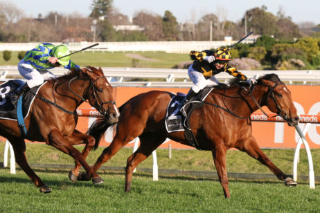 2021 Memsie Stakes Results: Behemoth Goes Back-To-Back