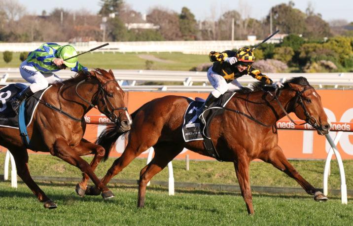 2021 Sir Rupert Clarke Stakes Field & Betting Update