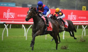 2021 Underwood Stakes Day: Sandown Scratchings & Track Report