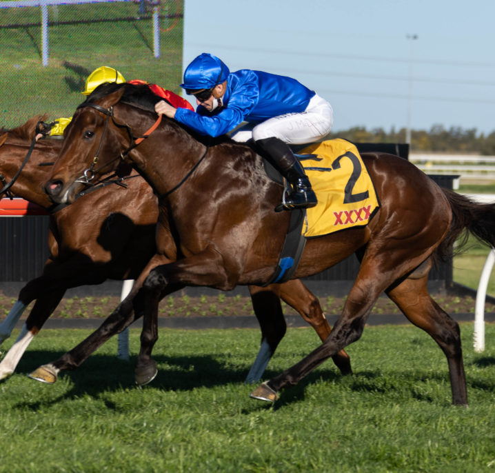 Anamoe Heads 2021 Golden Rose Stakes Field & Betting