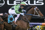 2021 Caulfield Cup Betting Update: Incentivise Favourite, She's Ideel Firms