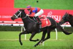 Cox Plate Bound Verry Elleegant Digs Deep to Win 2021 George Main Stakes