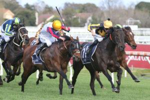 Nonconformist (Photo: Ultimate Racing Photos) | Races.com.au