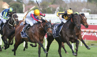 Caulfield Cup 2021 Odds Firm on Naturalism Stakes Winner Nonconformist