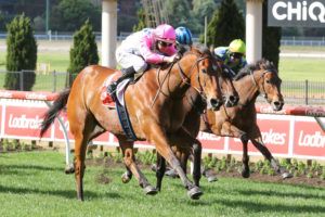 Moir Stakes 2021 Field Face Off At The Valley