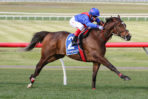 Scratched Cox Plate Favourite Zaaki to Target 2021 Mackinnon Stakes